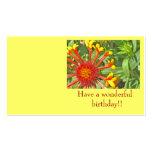 ¡Tenga un cumpleaños maravilloso!! tarjetas de la  Plantillas De Tarjetas De Visita