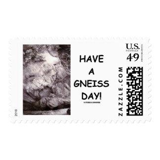 ¡Tenga un día del gneis!  Roca del gneis de la Sello
