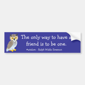 Tenga una pegatina para el parachoques del amigo pegatina de parachoque