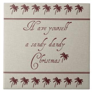 Tenga usted mismo navidad de un chulo de Sandy Tejas