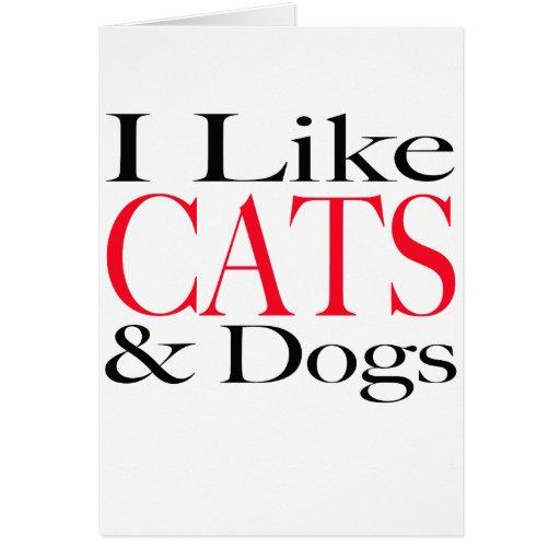 Tengo gusto de GATOS y de perros Tarjeta De Felicitación