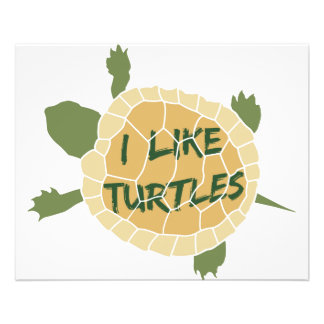 Tengo gusto de tortugas tarjetas informativas