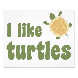 Tengo gusto de tortugas tarjeton