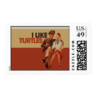 Tengo gusto de tortugas envio