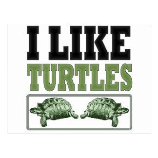 Tengo gusto del texto grande de las tortugas postal