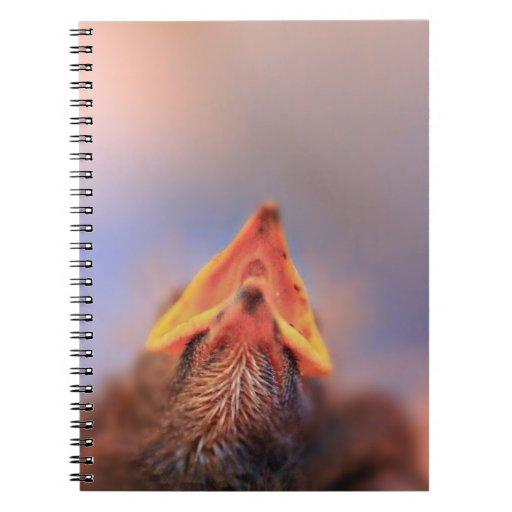 ¡Tengo hambre! (Pájaro de bebé) Libretas Espirales