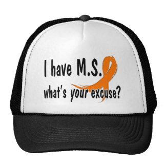 Tengo M.S. cuál es su excusa Gorros Bordados