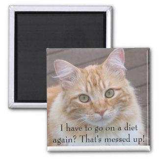¿Tengo que ir en una dieta otra vez? Imán Cuadrado
