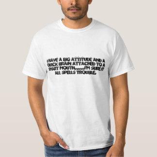 Tengo una actitud GRANDE y un agregado RÁPIDO del Camisas