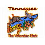Tennessee el pájaro voluntario B de la flor del Ra Postales