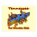 Tennessee el pájaro voluntario B de la flor del Postal