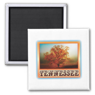 Tennessee Fall Tree Scene 2 Inch Square Magnet