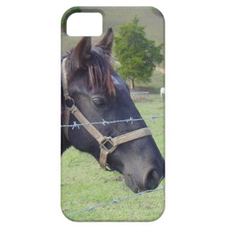 Tennessee Horse2 iPhone SE/5/5s Case