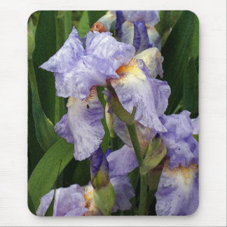 Tennessee Irises Mouse Pad