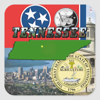 Tennessee Map, Flag, State Seal and Pictures