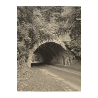 Tennessee Mountain Tunnel Wood Wall Art