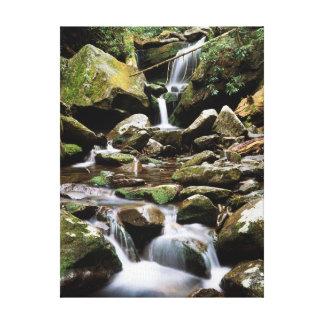 Tennessee, parque nacional 2 de Great Smoky Lienzo Envuelto Para Galerías