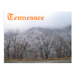 Tennessee Post Cards