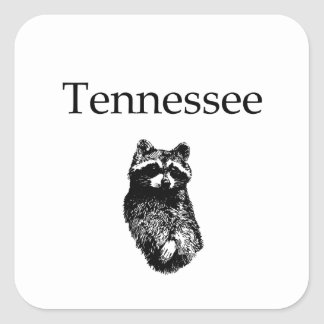 Tennessee Raccoon Square Sticker