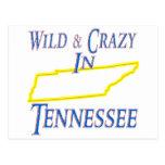 Tennessee - salvaje y loco postal