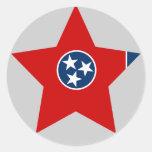 Tennessee Star Sticker