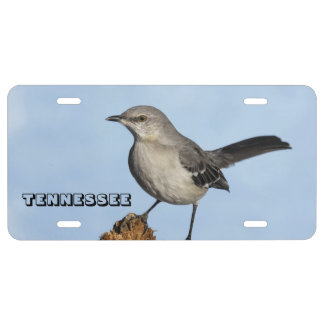 Tennessee State Bird License Plate