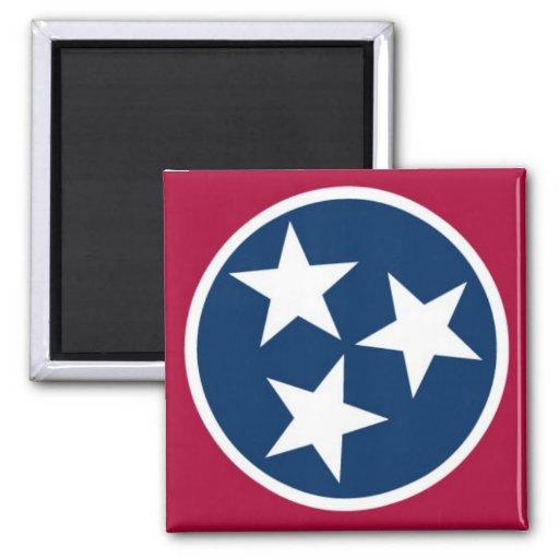 Tennessee State Flag Fridge Magnets