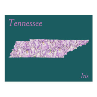 Tennessee State Flower Collage Map Postcard