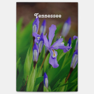 Tennessee State Flower Post-it® Notes