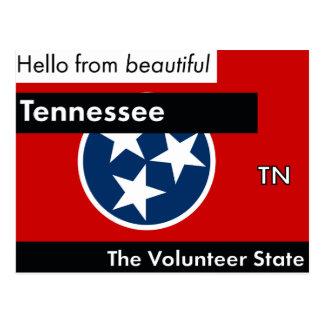 Tennessee The Volunteer State Postcard