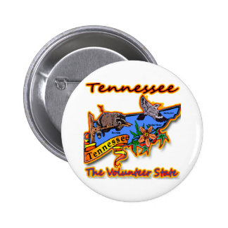 Tennessee The Volunteer State Racoon Flower Bird B Pins