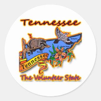 Tennessee The Volunteer State Racoon Flower Bird B Classic Round Sticker