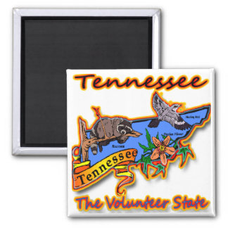 Tennessee The Volunteer State Racoon Flower Bird B Magnet
