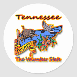 Tennessee The Volunteer State Racoon Flower Bird B Classic Round Sticker