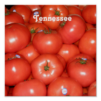 Tennessee Tomatoes Print