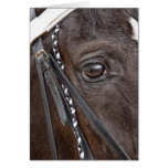 Tennessee Walker Greeting Card Card