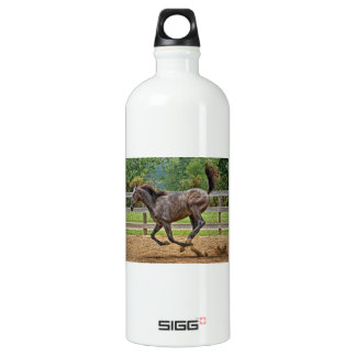Tennessee Walker Yearling Tail Up Water Bottle