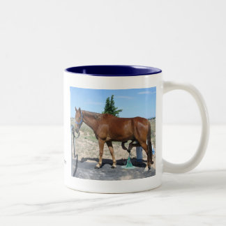 Tennessee Walking Horse Pedicure - Equine Humor Two-Tone Coffee Mug