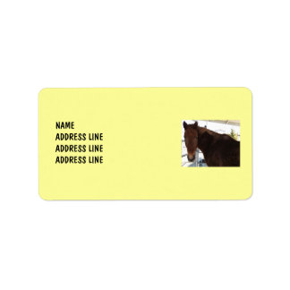 Tennessee Walking Horse Your Background - Western Label