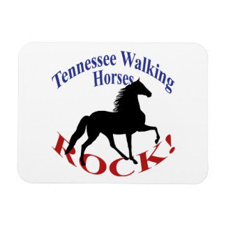 Tennessee Walking Horses Rock Rectangular Magnets