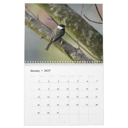 Tennessee Wildlife 2010 Calendar