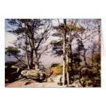 Tennessee Wilds Greeting Cards