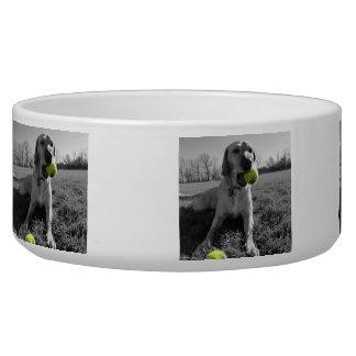 Tennis Ball Dog Bowl