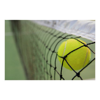 Tennis Ball Hitting Net Poster