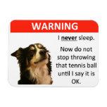 Tennis Ball Warning (Border Collie) Flexible Magnets