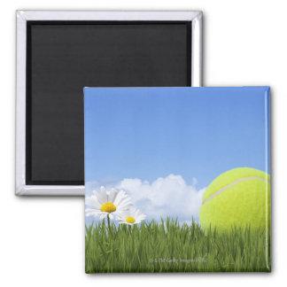 Tennis Balls Magnet