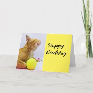 Tennis birthday card with ginger cat and ball