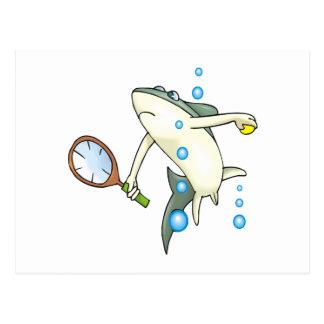 Tennis Shark Postcard