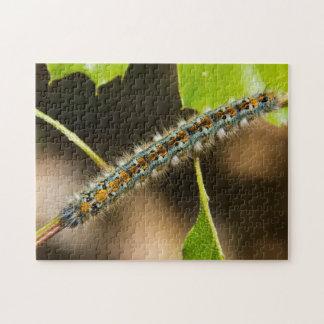 Tent Caterpillar Jigsaw Puzzle