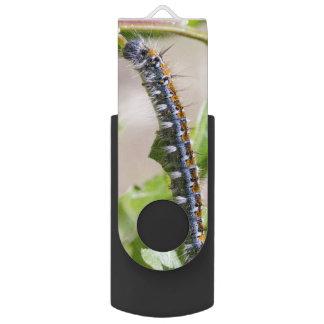 Tent Caterpillar on an Oak Tree Flash Drive
